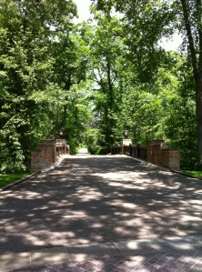 The main driveway to the house.